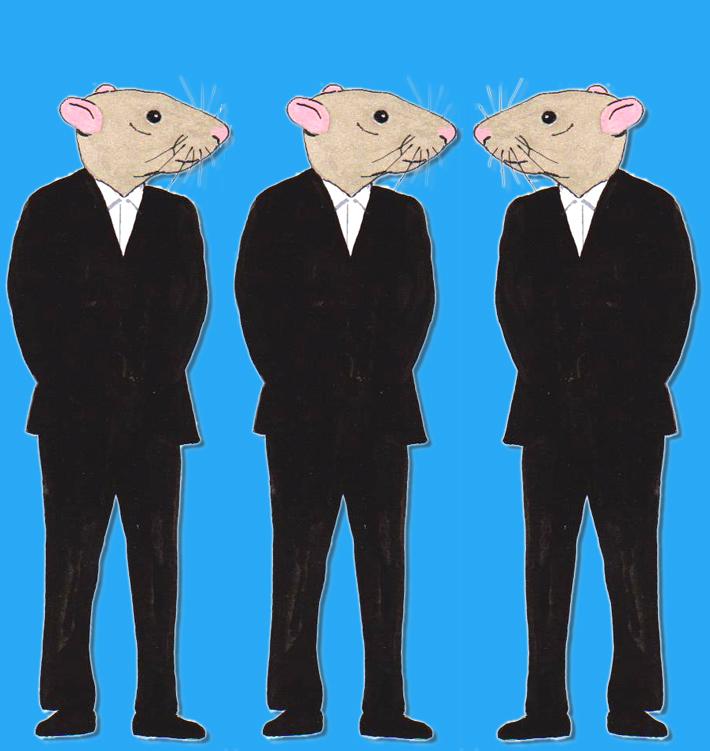 antidote-3-rats_1