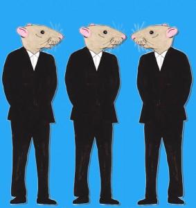 tests sur des animaux : nous ne sommes pas des rats de 70kg !