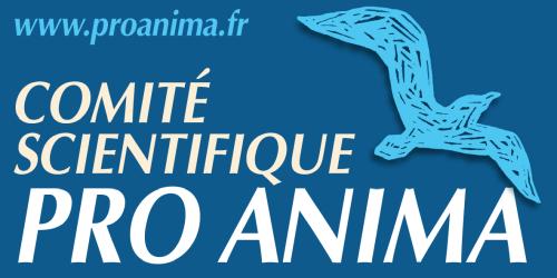 LogoProAnima